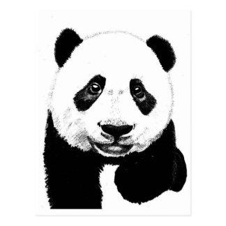 Dibujo de la panda postales