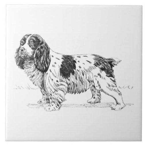 Dibujo de la raza del perro de caza del pájaro del azulejo cuadrado grande