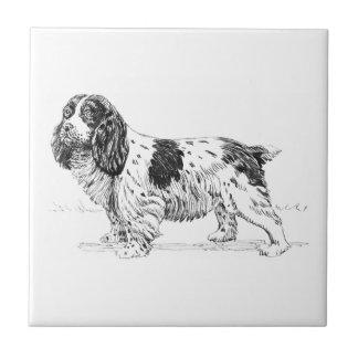 Dibujo de la raza del perro de caza del pájaro del azulejo cuadrado pequeño