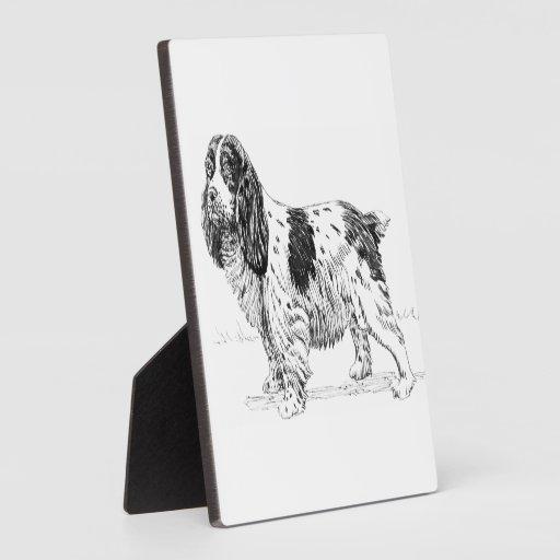 Dibujo de la raza del perro de caza del pájaro del placa para mostrar