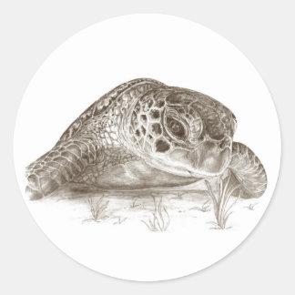 Dibujo de la tortuga de mar verde pegatina redonda