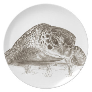 Dibujo de la tortuga de mar verde plato