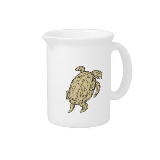 Dibujo de la tortuga de Ridley Jarrones