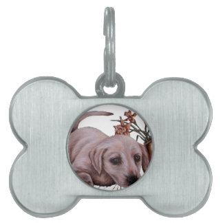 Dibujo de Labrador con los narcisos Placas De Nombre De Mascota