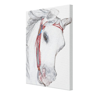 Dibujo de lápiz coloreado caballo nostálgico del c impresión en lienzo estirada