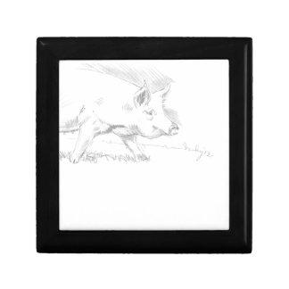 Dibujo de lápiz del cerdo caja de regalo