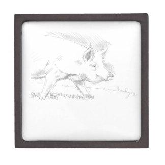 Dibujo de lápiz del cerdo caja de regalo de calidad