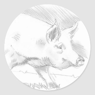 Dibujo de lápiz del cerdo pegatinas redondas