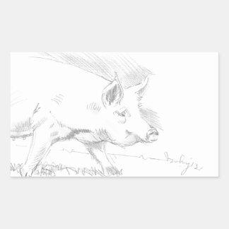 Dibujo de lápiz del cerdo pegatina rectangular