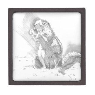 dibujo de lápiz del perro de las praderas cajas de regalo de calidad
