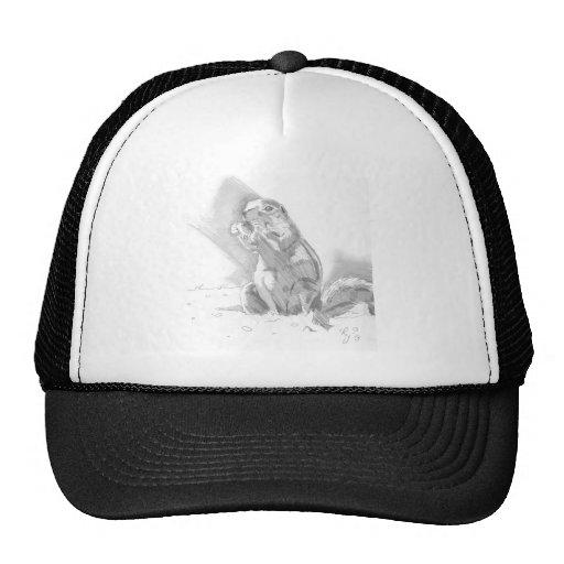 dibujo de lápiz del perro de las praderas gorra