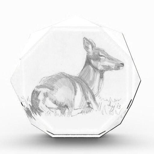 Dibujo de los ciervos