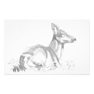 Dibujo de los ciervos papeleria