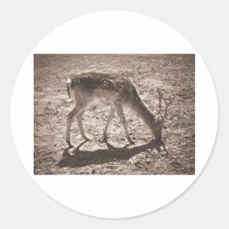 Dibujo de los ciervos pegatina redonda