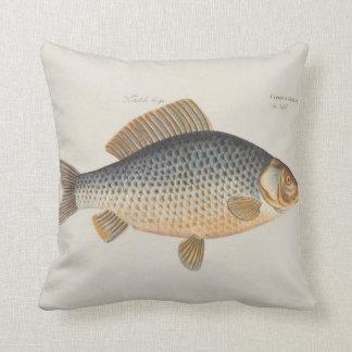 Dibujo de los pescados de agua dulce de la carpa cojín