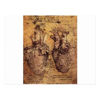 Dibujo del corazón y de sus vasos sanguíneos tarjetas postales