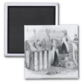 Dibujo del estambre dentro de las astillas iman de nevera