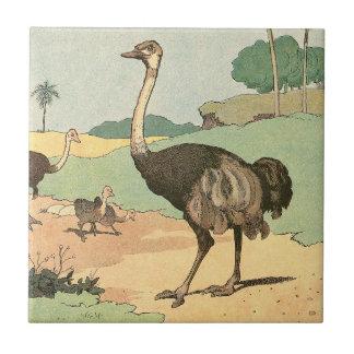 Dibujo del guión de la avestruz azulejo cuadrado pequeño
