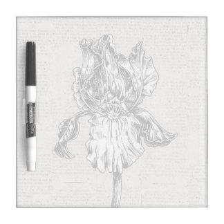 Dibujo del iris del vintage pizarra