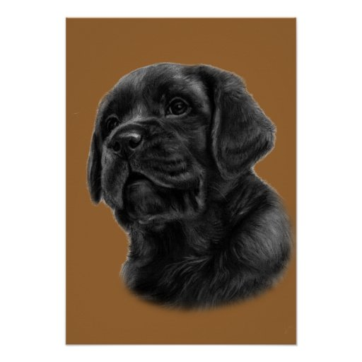 Dibujo del perrito de Labrador Impresiones