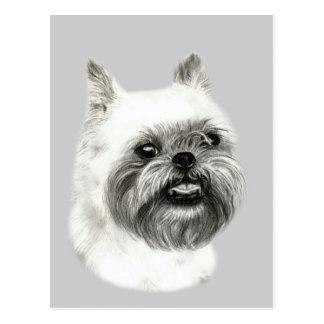 Dibujo del perro de Bruselas Griffon Tarjetas Postales