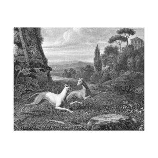 Dibujo del perro de los galgos italianos impresiones de lienzo