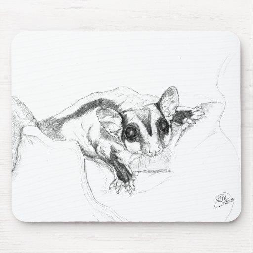 Dibujo del planeador del azúcar, bosquejo tapete de raton