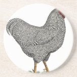 Dibujo del pollo de Plymouth Rock Posavasos Personalizados