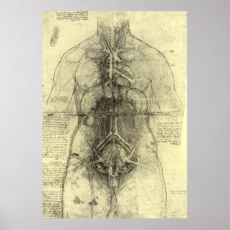 Dibujo del torso de una mujer de Leonardo da Vinci Impresiones