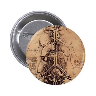 Dibujo del torso de una mujer de Leonardo da Vinci Pin