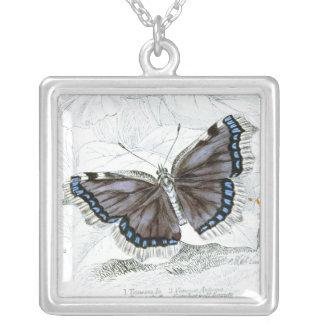Dibujo del vintage de la Británico-Mariposa Colgante Cuadrado