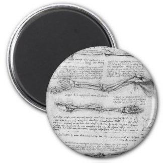 Dibujo del vintage de la estructura del brazo imán redondo 5 cm
