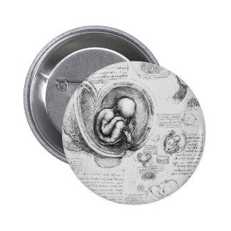 Dibujo del vintage de un feto en el útero 1 pin redondo de 2 pulgadas