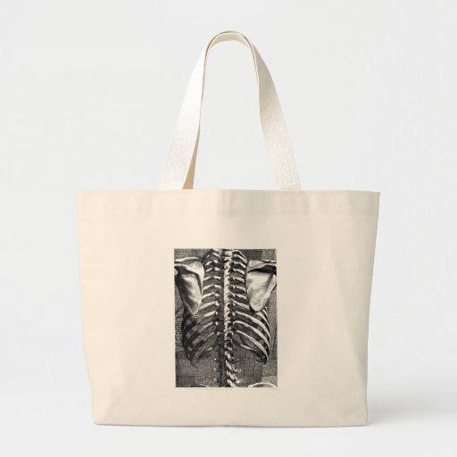 Dibujo del vintage de una espina dorsal y de un ri bolsa