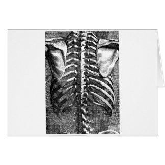 Dibujo del vintage de una espina dorsal y de un ri tarjeta de felicitación