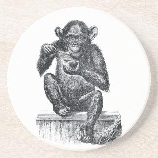 Dibujo del vintage del mono del chimpancé del bebé posavasos personalizados
