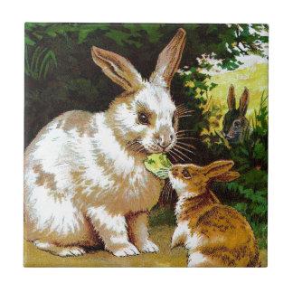 Dibujo del vintage: Pequeños conejitos Azulejo Cuadrado Pequeño