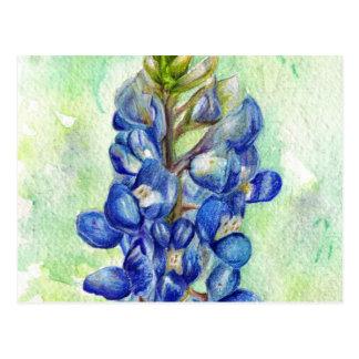 Dibujo del Wildflower del Bluebonnet de Tejas Tarjeta Postal