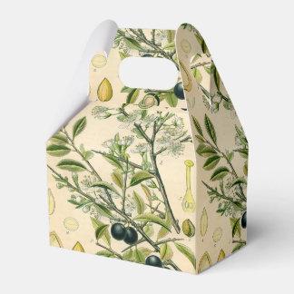 Dibujo floral del endrino botánico antiguo de la caja para regalos