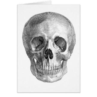 Dibujo frontal de la visión de un cráneo humano tarjeta de felicitación