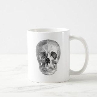 Dibujo frontal de la visión de un cráneo humano taza