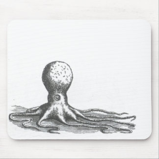 Dibujo náutico del libro del pulpo del vintage del mousepads