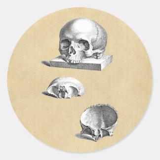 Dibujo ortopédico del cráneo y de los huesos pegatina redonda