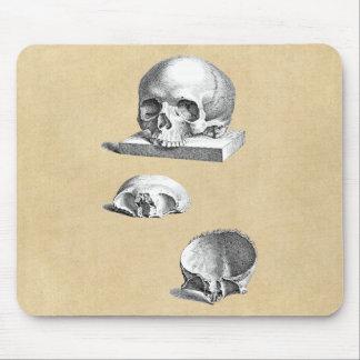 Dibujo ortopédico del cráneo y de los huesos tapetes de raton