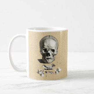 Dibujo ortopédico del cráneo y de los huesos taza