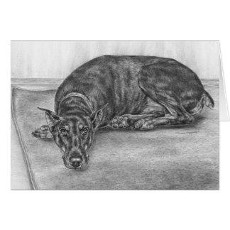 Dibujo soñoliento del perro del Pinscher del Dober Tarjeta Pequeña