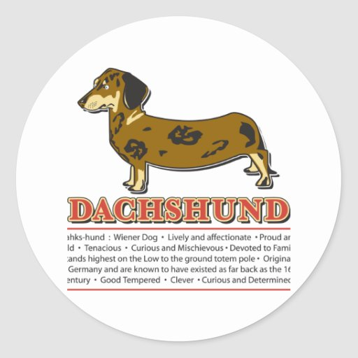 Diccionario del Dachshund Pegatina Redonda