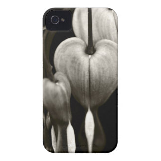 Dicentra Bleeding Hearts (B&W) iPhone 4 Case-Mate Cases
