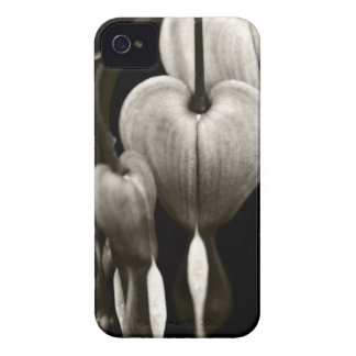 Dicentra Bleeding Hearts (B&W) iPhone 4 Case-Mate Case