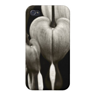 Dicentra Bleeding Hearts (B&W) Cases For iPhone 4